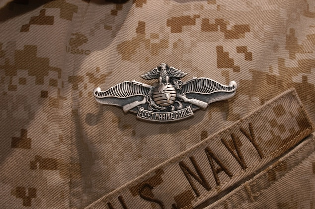 The Enlisted Fleet Marine Force Warfare Specialist pin was adopted into the U.S. Navy fleet in July 2000. Only sailors assigned to Fleet Marine Force units can qualify for the device, however all sailors must complete the program within 18 months of reporting to a command in the operational forces.  Sailors are required to master 14 core subjects ranging from Marine Corps history and weapons, to the Marine Air Ground Task Force.