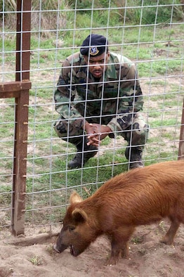 VANDENBERG AIR FORCE BASE, Calif. -- Staff Sgt. Damion McElroy, the 30th Security Forces Squadron game warden here, traps wild pigs on base and donates them to feed the homeless in nearby Lompoc.  He started Hunters Against Hunger, a program that gives hunters the opportunity to donate their excess game to feed homeless people.  (Courtesy photo)