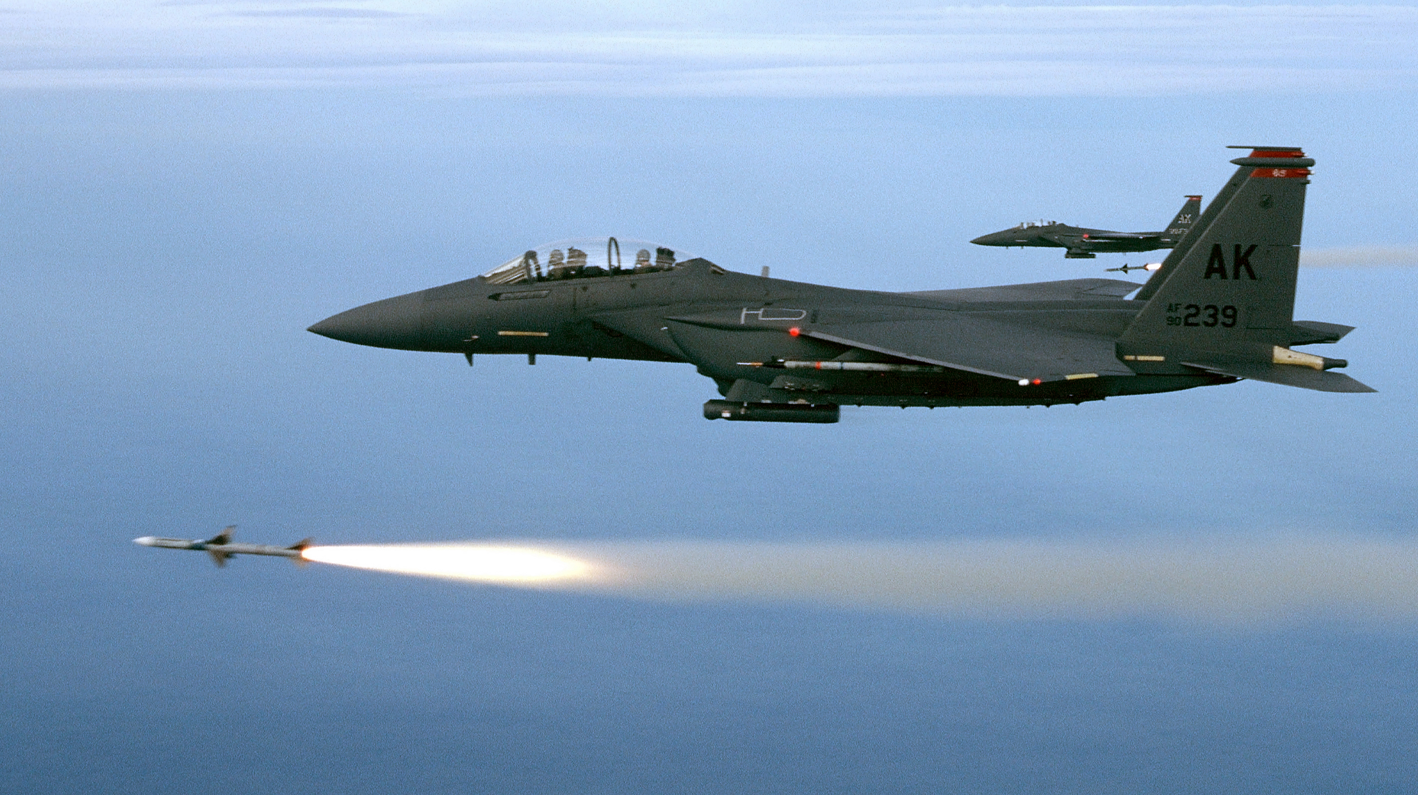 Air Force Height And Weight Chart: F-15E Strike Eagle e U.S. Air Force e Fact Sheet Display,Chart