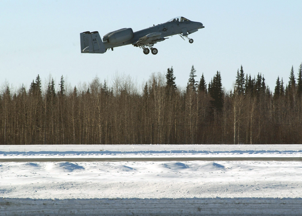 eielson afb cougar women Welcome to eielson air force base eielson is located 23 miles south of  fairbanks in central alaska's fairbanks north star borough fairbanks is alaska's .