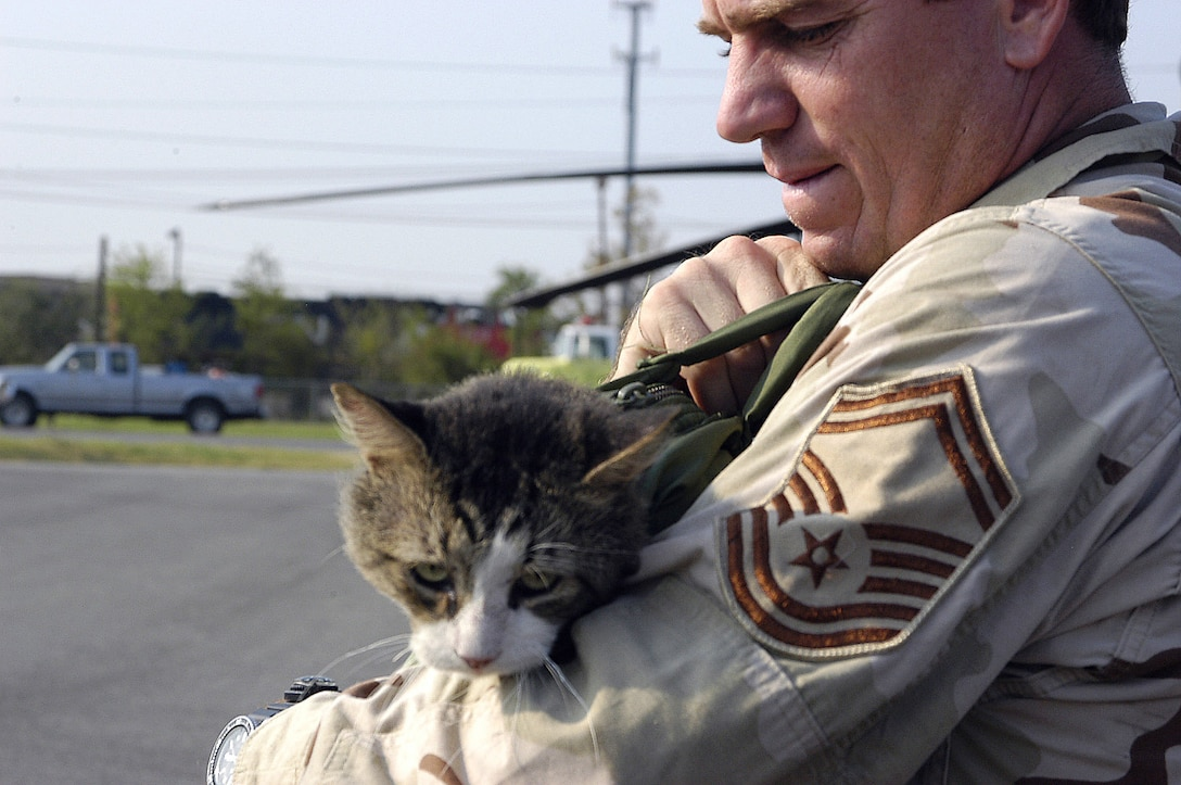 JACKSON, Miss. -- Senior Master Sgt. James Sanchez carries a cat he rescued from the second floor of a flooded house in New Orleans.  The cat, which he named PJ, is one of 22 cats he has saved during rescue missions in support of Hurricane Katrina relief operations.  Sergeant Sanchez is a pararescueman with the 306th Rescue Squadron from Davis-Monthan Air Force Base, Ariz. (U.S. Air Force photo by Senior Master Sgt. Elaine Mayo)