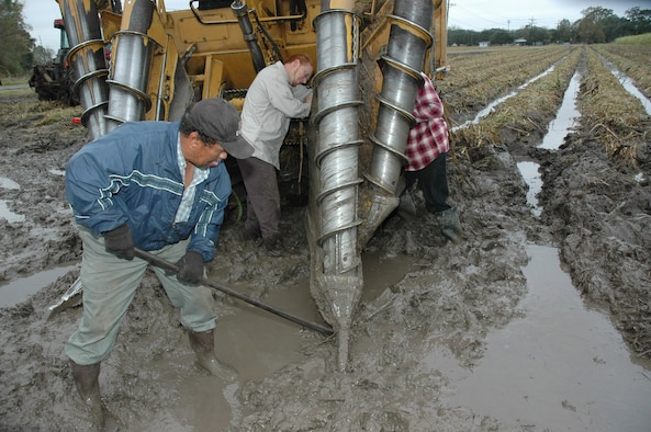Staff Sgt. Kent Roberts and two workers struggle in the mud to repalce a screw that broke from the combine during harvesting. The muddy conditions are part of the business in south Louisiana. As soon as the part is replaced, Sergeant Roberts gets back in the combine and continues harvesting. He is a reservist with the 926th Fighter Wings at Naval Air Station Joint Reserve Base New Orleans.  (U.S. Air Force photo/Master Sgt. Chance Babin)