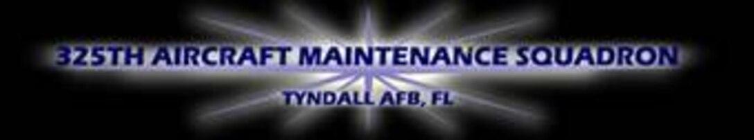 325th Aircraft Maintenance Squadron (AMXS)