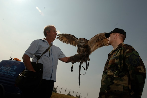 Twinkle, a 19-year old European eagle owl, stretches her 5-foot wings in front of Master Sgt. Bob Kopecky July 27 from the arm of Keith Mutton. The master sergeant, from White Bear Lake, Wisc., is NCO in charge of flight safety for the 100th Air Refueling Wing at RAF Mildenhall. Mr. Mutton owns and operates Phoenix Bird Control Services, a company helping the base run its bird aircraft strike hazard program. The aim is to rid the base of birds that pose bird strike problems for aircraft operating from there.  (U.S. Air Force photo by Master Sgt. Lance Cheung)