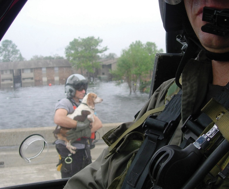 NEW ORLEANS, La.- Surrounded by flood waters, Senior Master Sgt. Pete Callina rescues the stranded beagle from the I-10 overpass. The dog assisted Sergeant Callina, a pararescueman with the 308th Rescue Squadron, by shepparding hurricane victims into waiting 920th Rescue Wing helicopters. (U.S. Air Force photo)