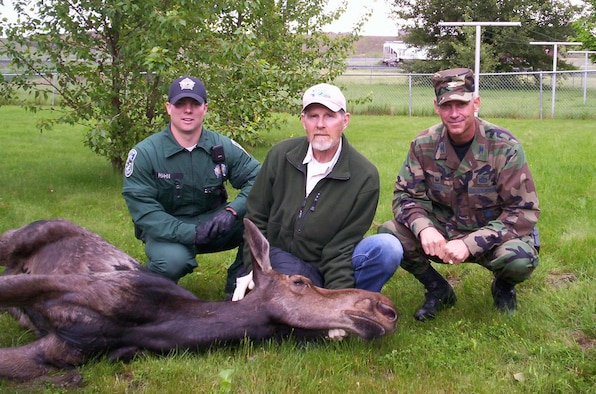 A young female moose found her way onto the base early Saturday morning and was roaming around the base housing areas. The 92nd Air Refueling Wing teamed with Washington State Fishing and Wildlife Department wardens to sedate, capture, secure, revive and transport for release the frightened animal. She was returned to the wild unharmed and without any damage to base property.
