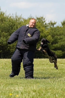 Tech. Sgt. David Haupt and Military Working Dog Bico, 436th Security Forces Squadron, during a public military working dog display near the Base Exchange May 16. The Security Forces Squadron hosted Dover AFB's National Police Week activities, which took place May 13 - 20.