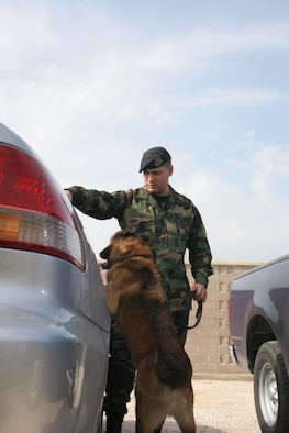 Staff Sgt. Alonzo Ivey, 39th Security Forces Squadron military working dog handler, does a vehicle check with his partner Robby Oct. 31. Robby has been working with the Air Force for more than 10 years. Robby, like all military working dogs have an important job of checking for contraband on vehicles and places. (U.S. Air Force photo by Senior Airman Patrice Clarke)