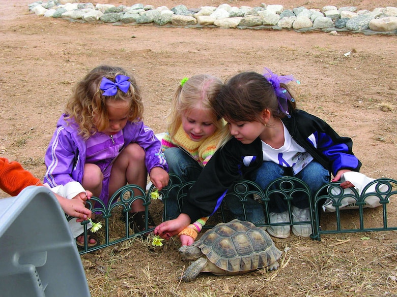 Three girls learn about the desert tortoise at the 2005 Edwards Earth Day celebration. Environmental Management hosted the annual Edwards Earth Day celebration, April 20, 2006, in the base exchange parking lot.  (Courtesy photo)