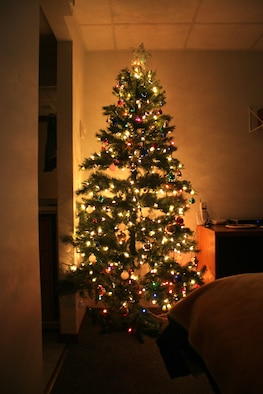 """Fire prevention rules for Christmas trees: A dried-out evergreen tree is an extremely dangerous fire hazard. Buy a freshly cut tree; beware of any tree with brittle or shedding needles. Stand the tree on a sturdy, non-trip tree stand; keep it away from heat sources, such as radiators, television sets and fireplaces. Ensure it does not block room exits. Do not put it in front of balcony doors, this is a second means of escape. Check the water level daily; discard the tree when the water absorption stops. When purchasing an artificial tree, be sure it is labeled as """"fire-retardant."""" (U.S. Air Force photo by Senior Airman Tim Beckham)"""