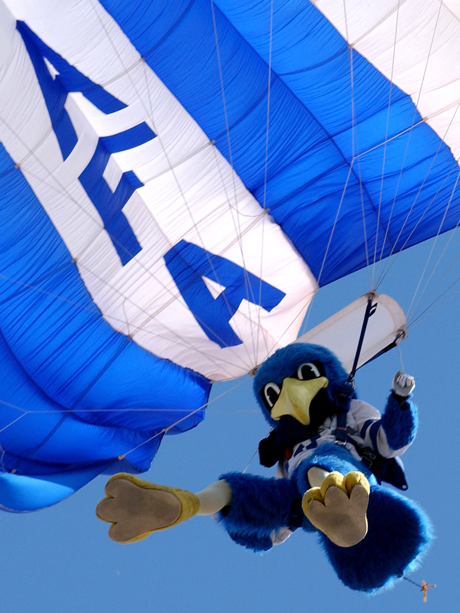 Image result for Air Force mascot