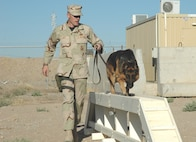 Staff Sgt. Keith Lippy and Beni are celebrating the Air Forces' 59th Birthday on patrol in Iraq.  Benji and Sergeant Lippy, a military working dog handler, are assigned to the 506th Expeditionary Security Forces Squadron at Kirkuk Air Base, Iraq.  (U.S. Air Force photo)