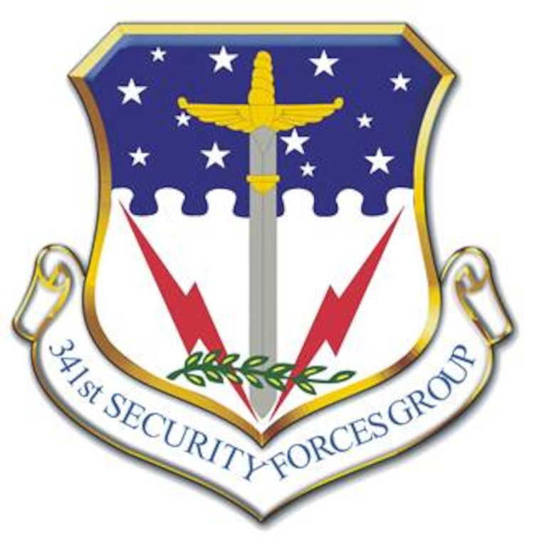 341st Security Forces Group shield