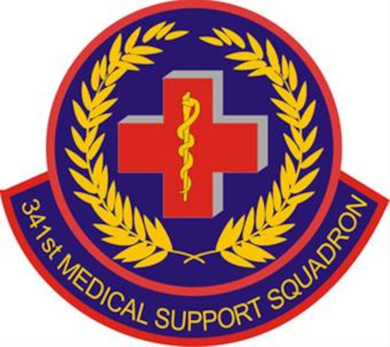 341st Medical Support Squadron patch