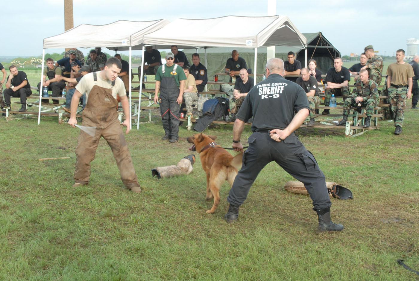 Dog Training School Mwd