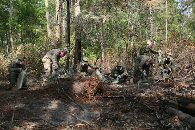 Marines and sailors from the Air Station help search for debris at the scene of the crash site April 25. It was the fourth day after the incident and the  majority of the aircraft had already been recovered.