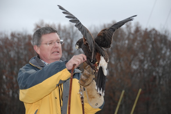 """Don Hervig, an Arnold Engineering Development Center (AEDC) engineer in the Instrumentation & Diagnostics department of the Technology & Analysis branch, wraps a jessie around his Harris Hawk """"Zena"""" while he explains characteristics of this particular bird. (Photo by Rick Goodfriend)"""