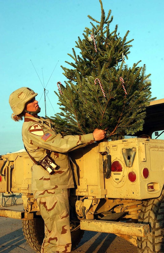 Army Sgt. Maj. Della St. Louis, operations sergeant major for  Headquarters Company, 4th Brigade Combat Team, 1st Cavalry Division, takes her  real Christmas tree on a tour of Camp Taji, Iraq, to have soldiers of the camp  help decorate it. Photo by Cpl. Benjamin Cossel, USA