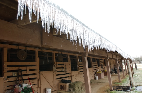 Ice at the Horse stables