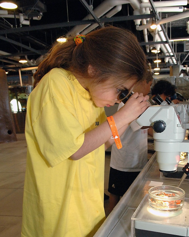Family member Celeste Smith checks out marine life under a microscope during a youth services visit to the aquarium in San Pedro. This summer's camp program includes field trips to Mulligan's Family Fun Center, Mud Park in Huntington Beach, Natural History Museum and the Science Museum.  In addition to the trips, campers will be able to participate in activities such as art projects, science projects, team-building projects, swimming, writing, singing, community service and Fit Factor/sports participation. The summer camp begins June 25.
