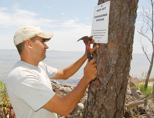 EGLIN AIR FORCE BASE, Fla. -- Joe Kern, Colorado State University wildlife researcher, posts an endangered species sign near a bald eagle nesting area on Eglin Air Force Base. (U.S. Air Force photo by Jerron Barnett)