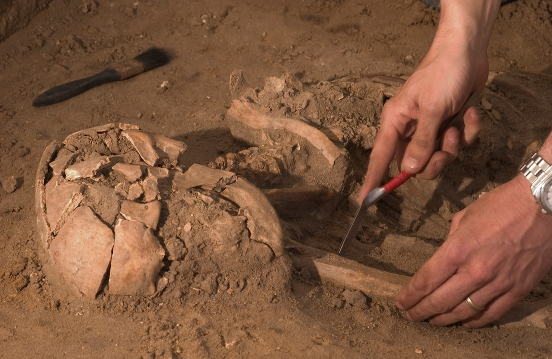John Craven, an archeologist for Suffolk County Council, lifts the remains of a human skeleton from the earth Wednesday, March 14, for further study at the company's home office. The skeleton was found during an excavation of land at RAF Mildenhall's Beck Row base housing where new construction is planned. The remains were estimated on site to be of 1st century A.D. Roman descent between 1,900 and 2,000 years old. Mr. Craven has been working for Suffolk County for 14 years and has worked to preserve human remains on several occasions.
