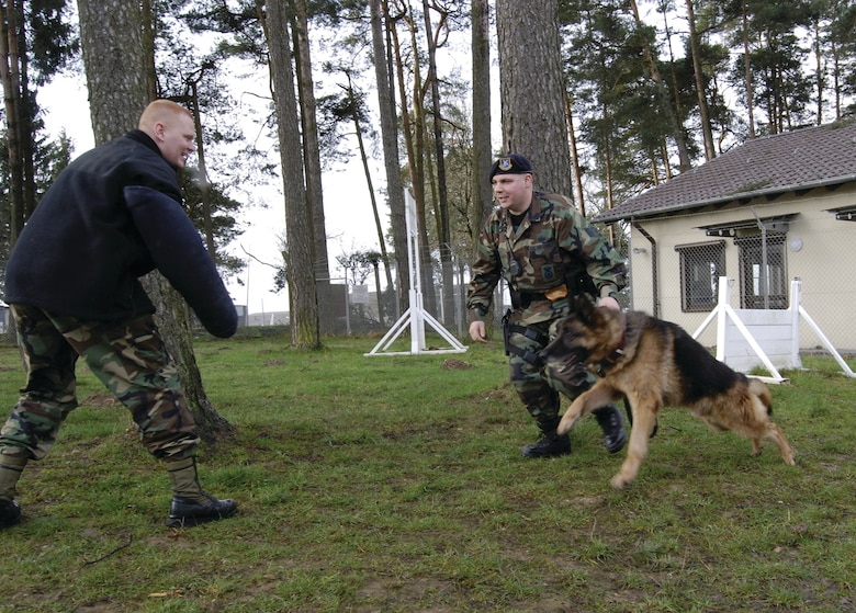 SPANGDAHLEM AIR BASE, GERMANY -- Staff Sgt. David Duty and Ricky, his German Shepherd, charge Staff Sgt. Paul Niswonger who plays an aggressor during training. Working as a team, the handler leads his dog through a rigid and repetitive training schedule every month to refine skills and remain proficient. All are members of the 52nd Security Forces Squadron. (US Air Force photo/Nick Anderson)