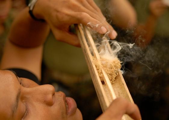 Le bambou en survie 070514-m-3819r-029