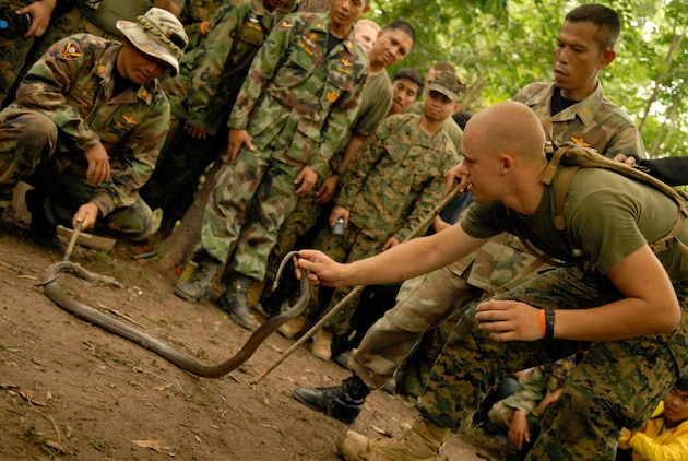 "Several Okinawa-based U.S. Marines from 3rd Marine Division took a stab at amateur ""cobra-charming"" May 14 at Thailand's Ban Chan Krem Training Area, volunteering to demonstrate the proper way to it pick up the snake during jungle survival training. Royal Thai Reconnaissance Marines showed their American counterparts how to catch a cobra during the training. Cobra Gold is an annual, multilateral exercise, now in its 26th year, gives the U.S., Thailand and their Pacific partners skills to come together and act decisively at a moment's notice to meet any contingency that could threaten the security and stability of the region. (Official Cobra Gold 2007 Photo by: Cpl. Mark Fayloga) (Released) (Official Cobra Gold 2007 Photo by: Cpl. Mark Fayloga) (Released)"