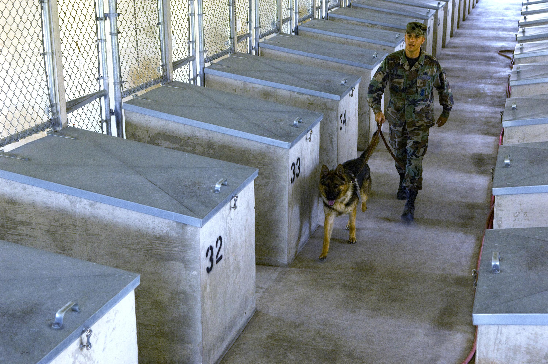 Military Dog Training Facility