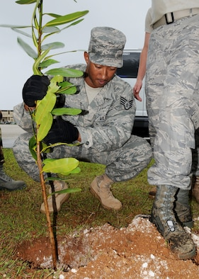 ANDERSEN AIR FORCE BASE, Guam -Staff Sgt. Curt Mitchell plants a tree donated by the 36th Civil Engineer Squadron at the First Term Airmen's Center here Dec. 11. Sergeant Mitchell and the FTAC Airmen planted two trees in efforts to help beautify Andersen. (U.S. Air Force photo by Senior Airman Nichelle Griffiths)