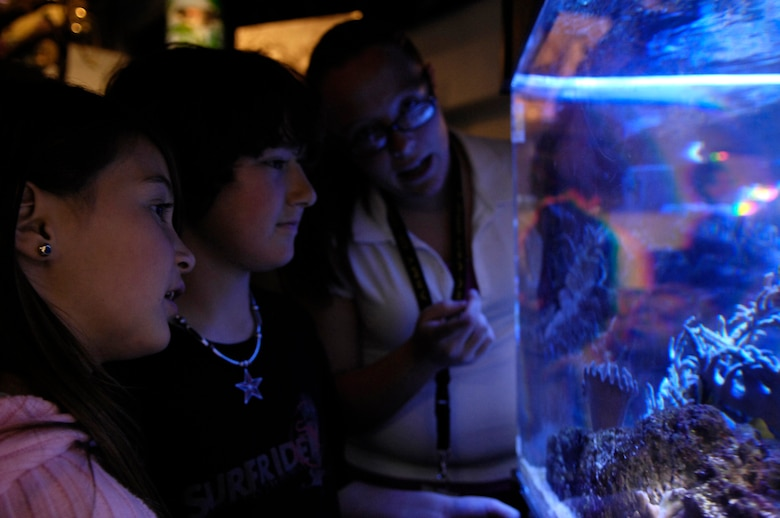 VANDENBERG AIR FORCE BASE, Calif. -- Katy Narva teaches Krista and Steven Eisen about underwater ecosystems on Feb. 20. Cabrillio High School presented the local community with a look at the underwater habitats surrounding the Central Coast and the Channel Islands. The exhibits, which were part of a student-ran aquarium, are used to teach hundreds of elementary school students of the different ecosystems living around them. Nine of the students in the class are military dependents from Vandenberg. (U.S. Air Force photo/Airman 1st Class Christian Thomas)