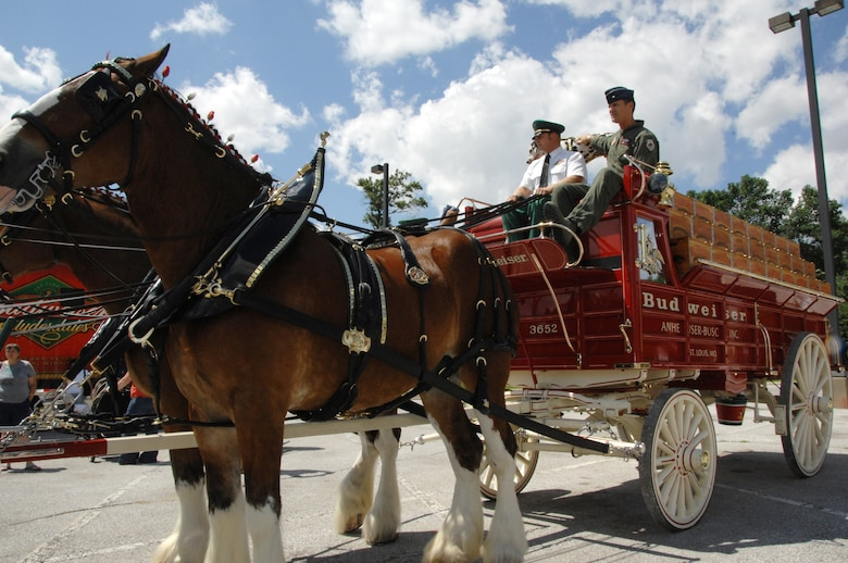 55th Wing Commander Brig. Gen. Jim Jones travels in style on a wagon pulled by the Budweiser Clydesdale horses. The Budweiser team was at Offutt as part of their effort to show support for military men and women. (U. S. Air Force Photo By/Dana P. Heard)