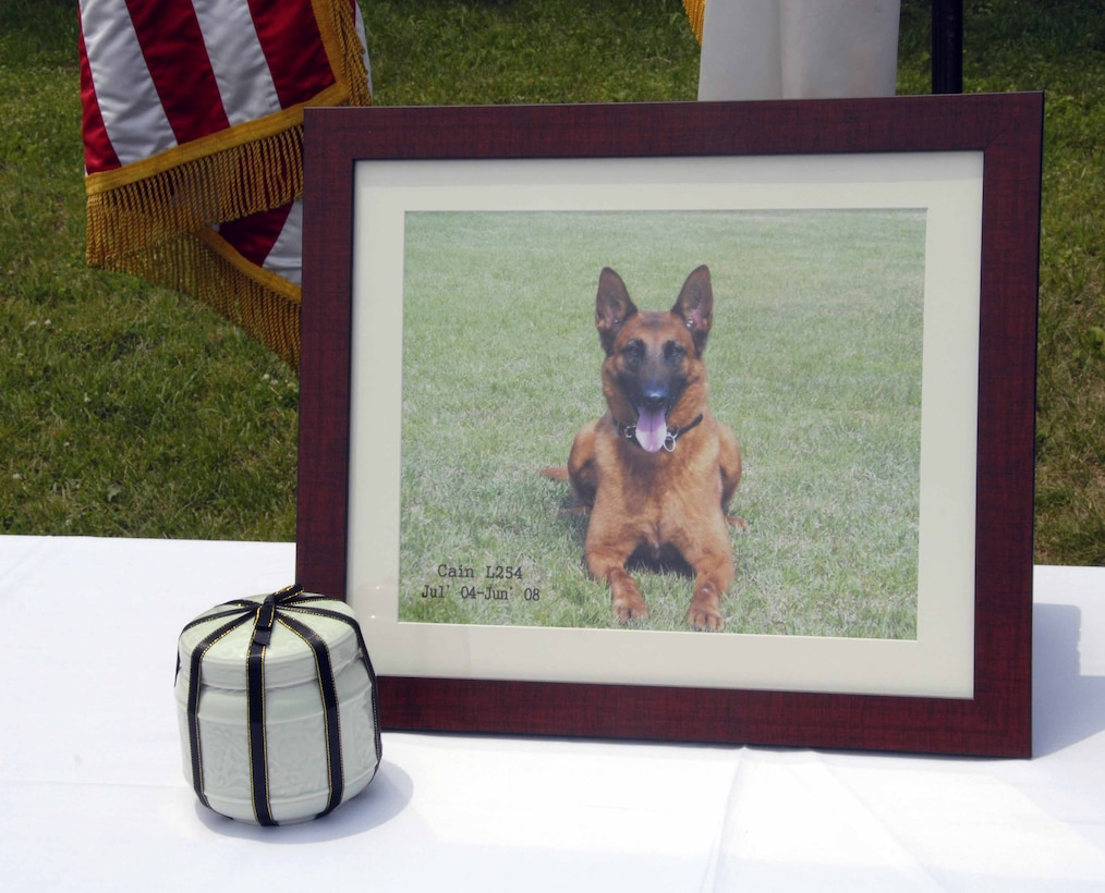 OSAN AIR BASE, Republic of Korea – Cain, a four-year-old Military Working Dog for the 51st Security Forces Squadron, recently succumbed to cancer. The 51st SFS    held a memorial ceremony June 20 to honor Cain's memory and to thank him for his service. The service was attended by Cain's handler Staff Sgt. Eric Morales, fellow K-9 unit members, Lt. Col Gregory Reese, 51st SFS commander, and Col. Jon Norman, 51st Fighter Wing commander.  (U.S. Air Force photo/Staff Sergeant Lakisha Croley)
