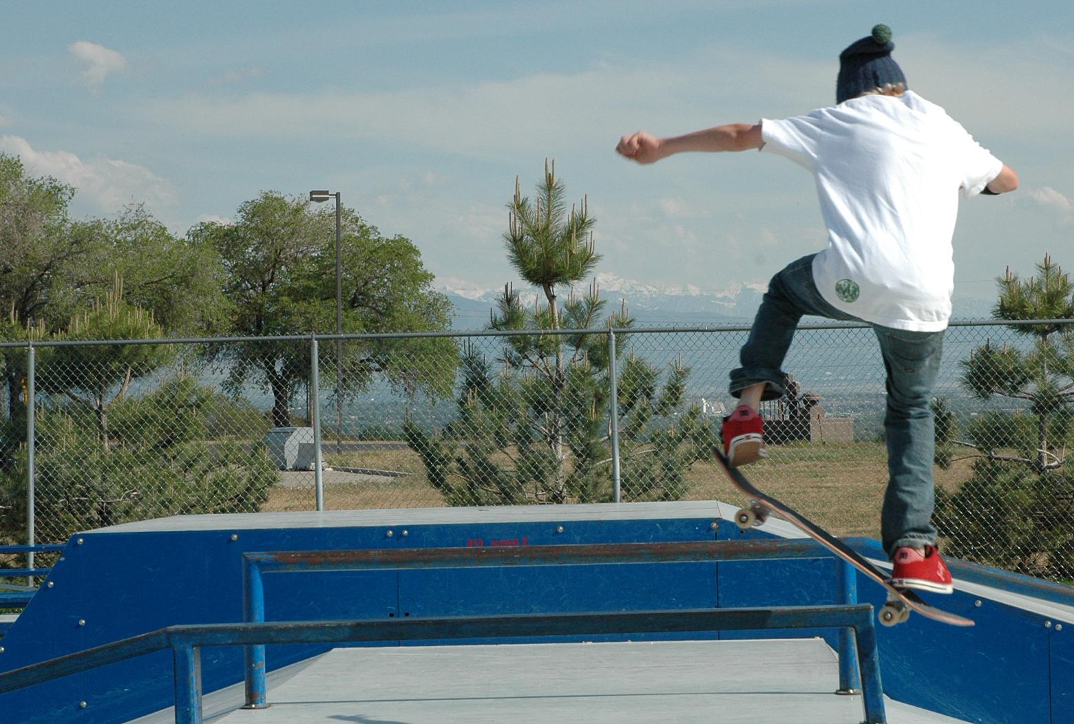 air force 1 skate