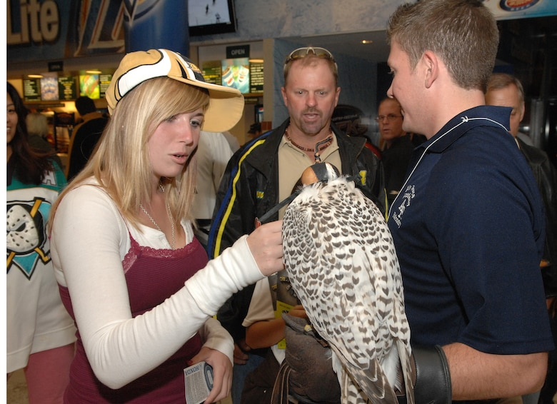 U.S. Air Force Academy Cadet 3rd Class Jeremiah Baxter, a falconer, holds Banshee, a Gyr/Saker Falcon, while hockey fans pet her and ask questions at the Honda Center before the Ducks vs Predators hockey game in Anaheim, Calif. during Air Force Week Nov.14.