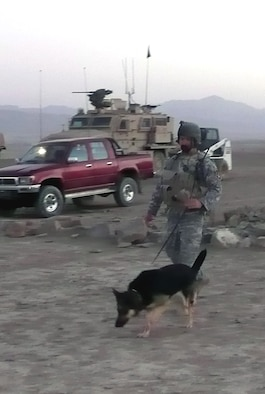 Military working dog Dena, a 6-year-old German Shepherd, and her handler, Staff Sgt. Christopher Dion, perform a sweep while out on a combat mission in Afghanistan Sept. 26, 2008.  The MWD team has been in Afghanistan since May and have been supporting Operation Enduring Freedom.  Before deployment, they both trained in the U.S. Air Force Expeditionary Center's Phoenix Warrior Training Course at Fort Dix, N.J.  Both Sergeant Dion and Dena are deployed from MacDill Air Force Base, Fla.  (U.S. Air Force Photo)