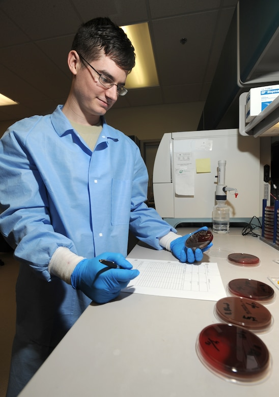 ELMENDORF AIR FORCE BASE, Alaska-- Airman 1st Class Nathan Knox of 3 Medical Support Squadron examines bacteria samples on April 15, 2009. His important role as a lab technician helps to provide proper diagnoses of diseases. (U.S. Air Force photo by Airman First Class Kristin High)