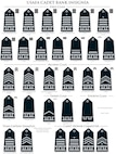 Under changes to cadet uniforms, metal ranks on shoulder boards have been replaced with embroidered ranks, and cadet rank insignias were updated to match cadet squadron organizational structures. (U.S. Air Force illustration)