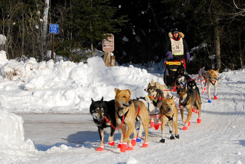 A sled-dog team in the 26th running of the John Beargrease Sled-dog Marathon passes by January 27, 2009 at a remote trail crossing in Northern Minnesota.  The 148th Fighter Wing Communication Squadron provided communication support for the race while conducting training.