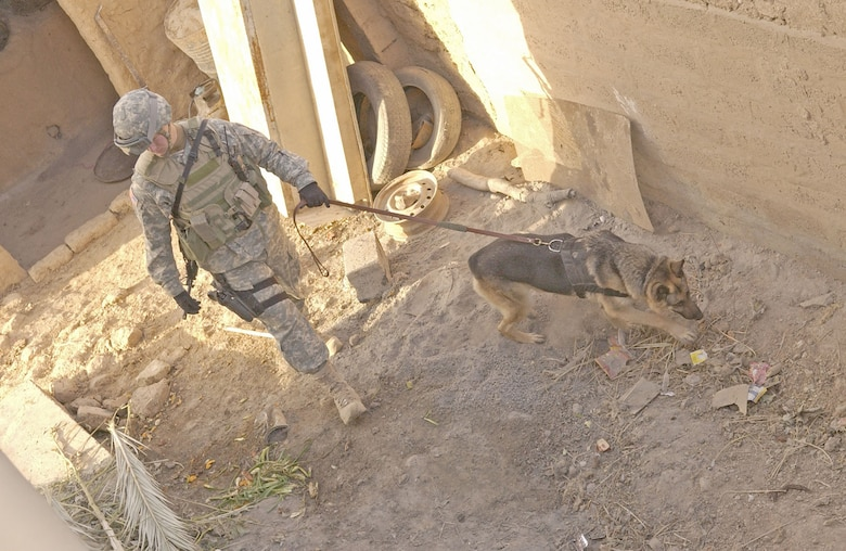 Air Force dog handler Senior Airman Daniel McClain, attached to the U.S. Army 25th Infantry Division, searches for explosive devices during a raid in Iraq in December 2006. (U.S. Air Force photo)