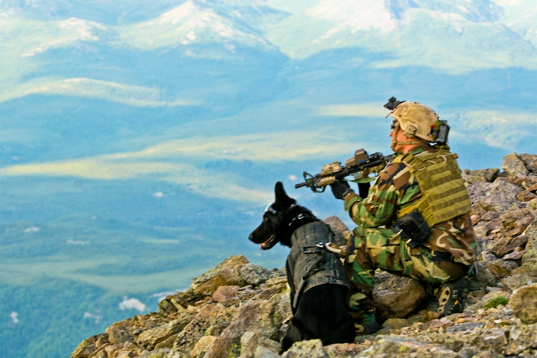 "A SEAL perches next to his military working dog during training in the Joint Pacific Alaska Range Complex FORT WAINWRIGHT, Alaska -- Operators from a west-coast based Navy SEAL team participated in infiltration and exfiltration training as part of Northern Edge 2009 June 15, 2009. Army Task Force 49, 1-52 Aviation Regiment, B company, transported the SEALS in CH-47D ""Chinook"" helicopters, performing two-wheel landings atop mountainous terrain in the Joint Pacific Alaska Range Complex. Exercise Northern Edge is a trainning exercise designed to promote and improve interoperability.