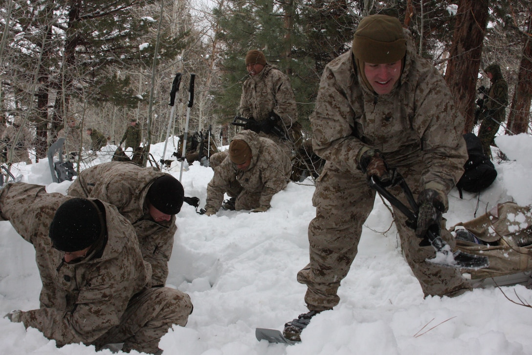 Marines and sailors of Regimental Combat Team 7 out of the Combat Center shovel snow to make their bivouac, or camping area, during the practical application portion of their Mountain Warrior Exercise in training area Aspen Bowl at Marine Corps Mountain Warfare Training Center Bridgeport, Calif., March 2.