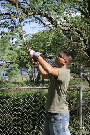 Sgt. Jumar Quedding cuts branches from treest at the Firends for Life animal rescue shelter here March 13. Volunteers from U.S. Marine Corps Forces, Pacific spent the day beautifying shelter grounds and bonding with the animals.