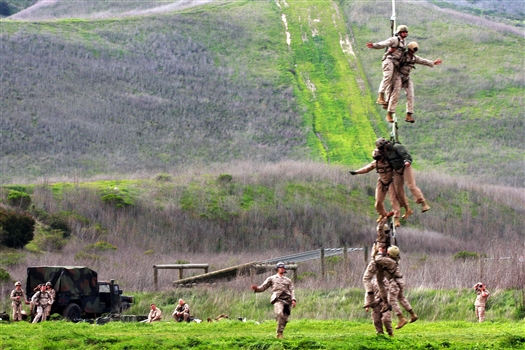 non commissioned officers of marines essay A non-commissioned officer is defined as a subordinate officer (such as a  sergeant) in the army, air force, or marine corps appointed from among enlisted.