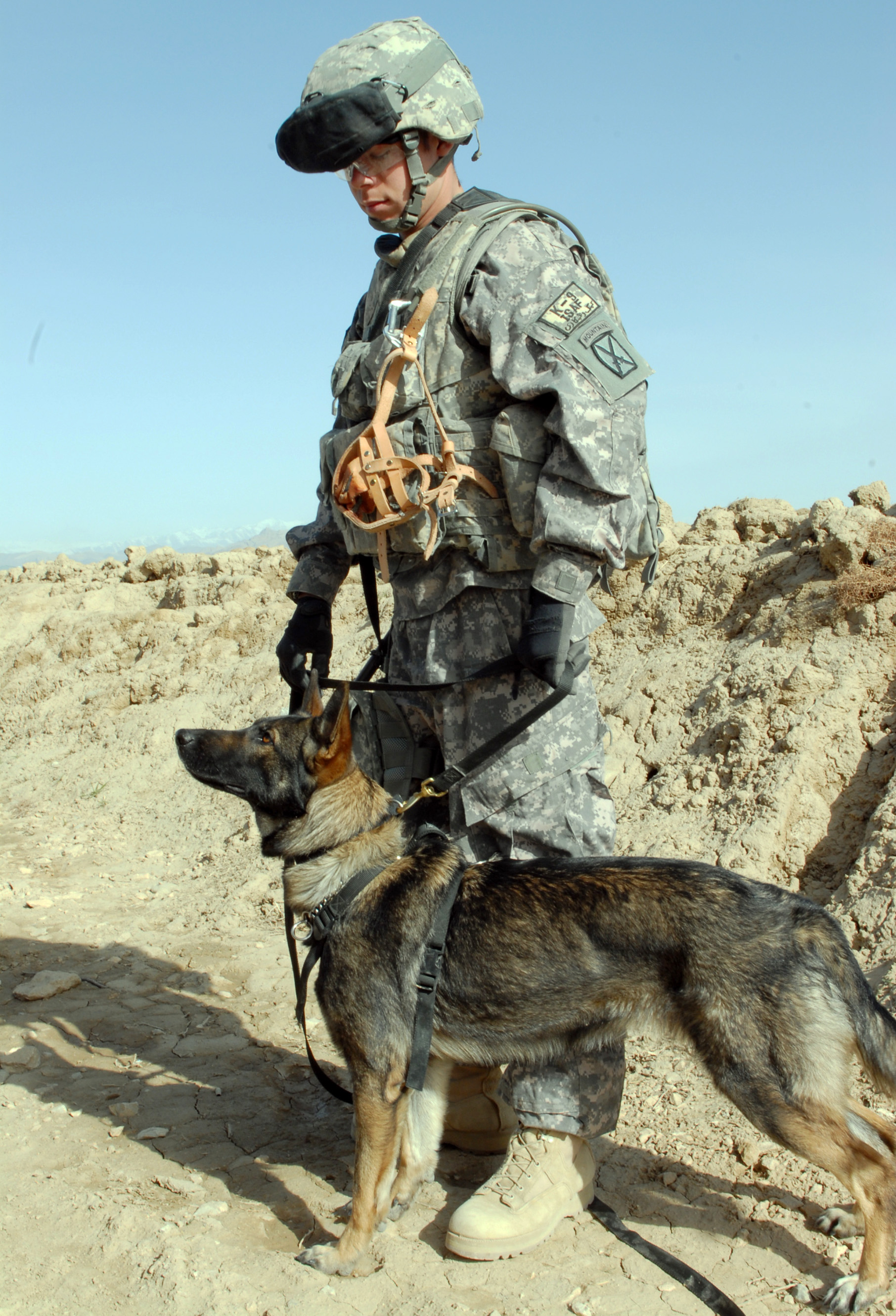 Army Sgt Stephen Netzley A K 9 Handler With 3rd Squadron 71st