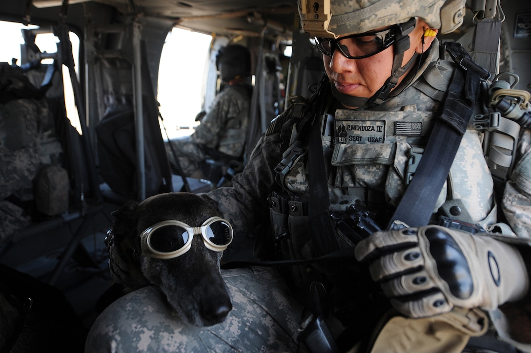 """Staff Sgt. Philip Mendoza pets his military working dog, Rico, wearing """"doggles,"""" during training aboard a helicopter April 21 at Joint Base Balad, Iraq. The training teaches the team how to safely and properly enter and exit aircraft, and prepares the for future air-assault missions. Sergeant Mendoza is a 332nd Security Forces Group military working dog handler deployed from Moody Air Force Base, Ga. He is a native of Lancaster, Texas. (U.S. Air Force photo/Senior Airman Elizabeth Rissmiller)"""