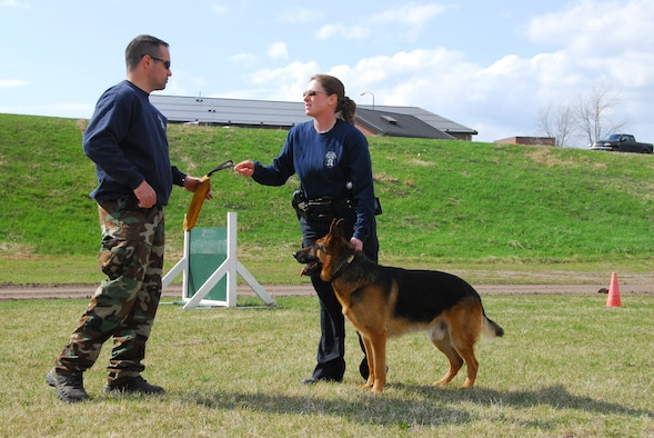 Duluth Police Department K-9 officers conduct training with their dogs at the Air National Guard Base in Duluth, Minn., May 11, 2009.  The 148th Fighter Wing Security Forces has opened their doors to welcome the four-legged guests to the base strengthening the effort of joint training in the community. (U.S. Air Force photo by Tech. Sgt. Brett Ewald)