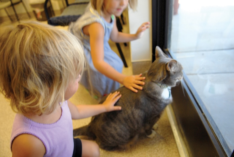 "Carley Smith, 4, and her sister, Natalie, 2, pet Max, 10, as he looks out the front door of the  Luke Air Force Base Veterinary Clinic. Max, a 21-pound gray tabby cat, has been at the Luke clinic for the last ten years after he was discovered in a drainage ditch after a monsoon. He is currently on official Army orders to the base, and provides ""Fat Cat Security and Pest Control"" as well as increasing morale for the clinic staff and visitors. (courtesy photo)"