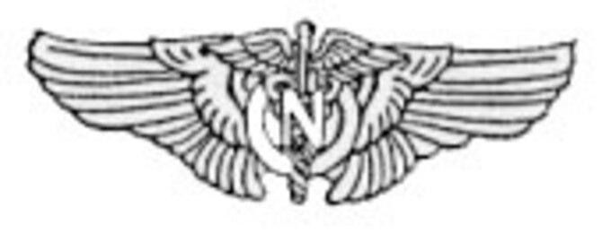 USAAF Flight Nurse Badge.